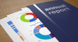rapport annuel